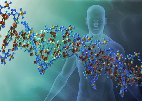 bioenerji ta-epta-epipeda-ths-dhmioyrgias-h-anthrvpinh-athanasia-kai-h-sygxronh-fysikh-8